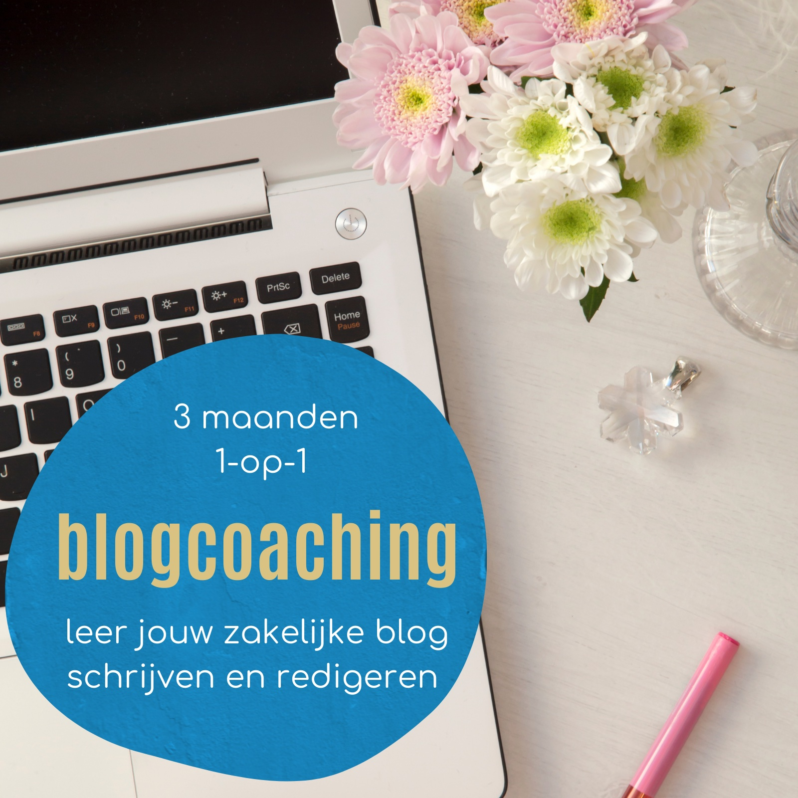 online blogcoaching